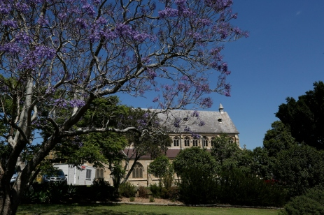 2017-10 Church & Rectory with Jacarandas 16