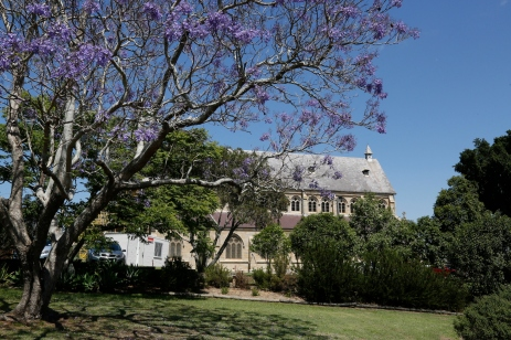 2017-10 Church & Rectory with Jacarandas 26