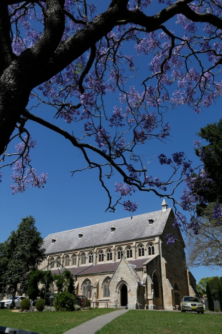 2017-10 Church & Rectory with Jacarandas 9