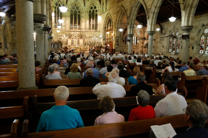 2017-11-25 Synod Mass at St Peter's 26