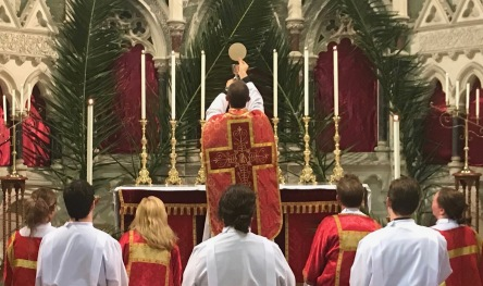 Palm Sunday Sung Mass (1)